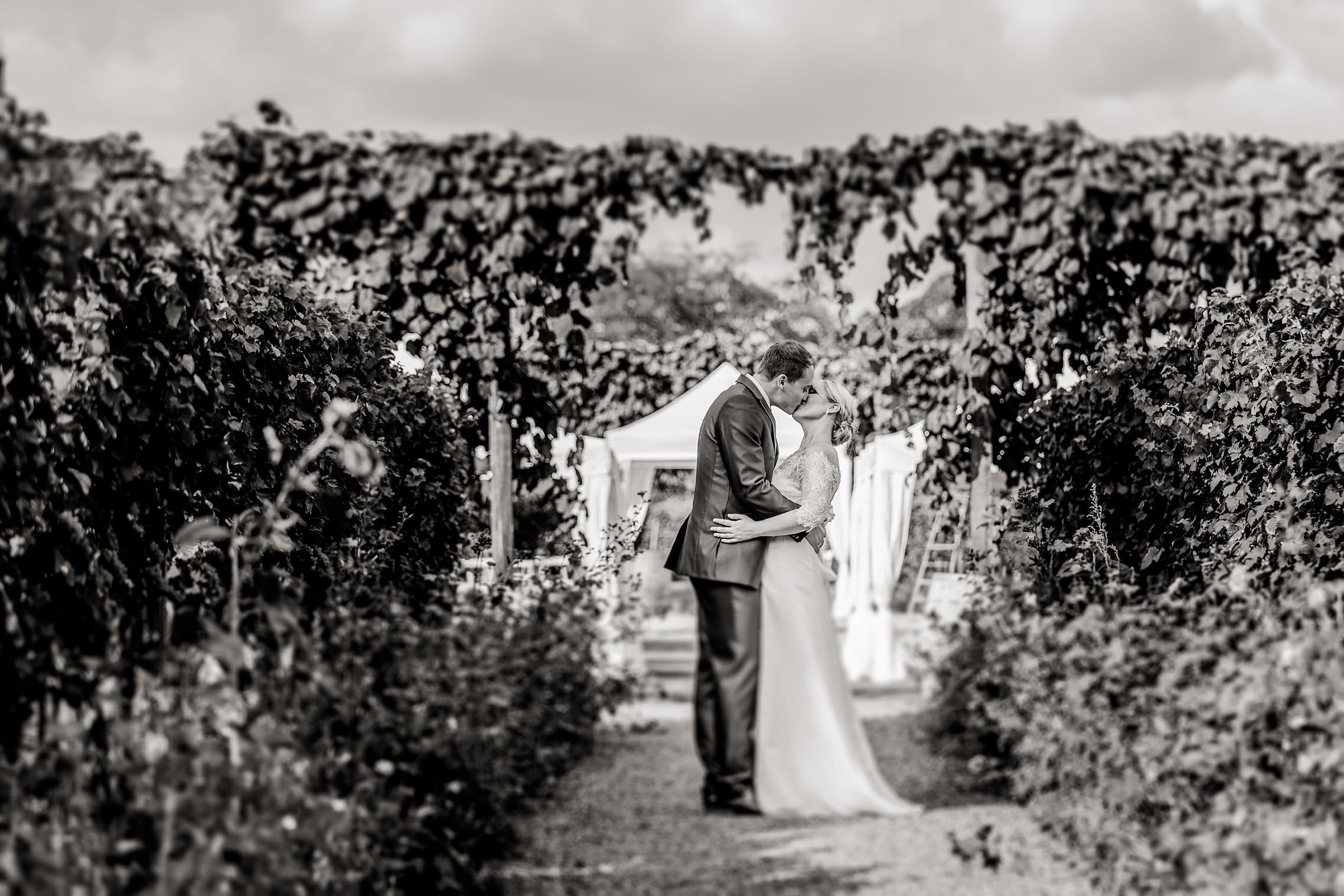 Romantisches schwarz-weiß Bild des Brautpaares vor dem Eingang der RebArena im Weingut Fitz-Ritter in Bad Dürkheim.