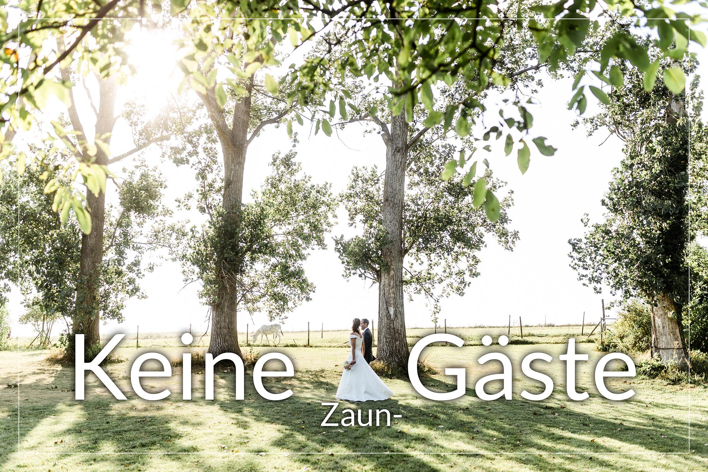 Hochzeitspaar vor Bäumen ohne Zaungäste