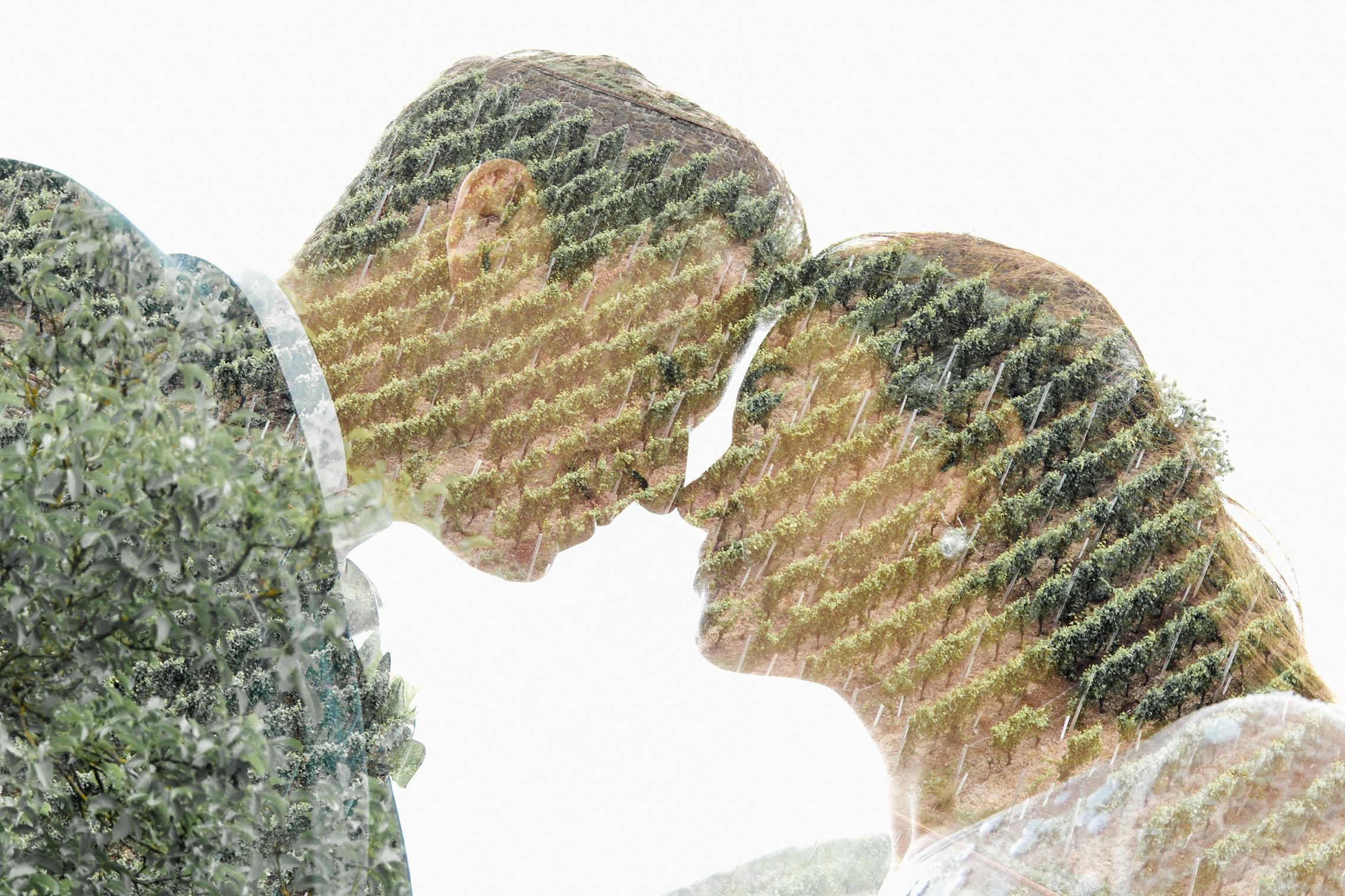Doppelbelichtung mit dem Brautpaar und den Weinreben.